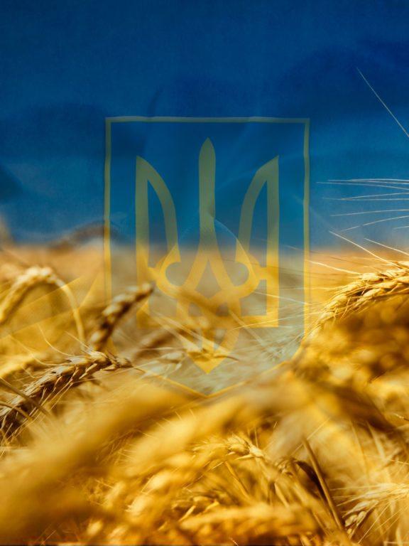 Красиві привітання з Днем Незалежності України у прозі, українською мовою