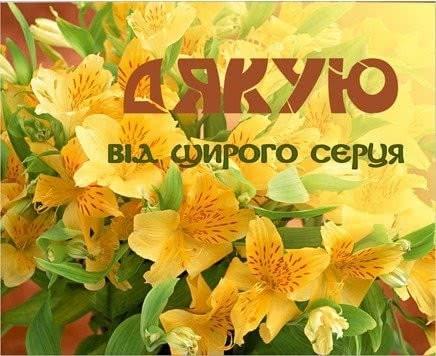 Слова дякую за привітання з днем народження українською мовою