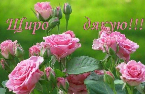 Зворушливі слова дякую за привітання з днем народження